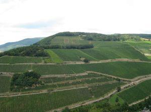 2008.8 Rhine Valley 8.JPG copy