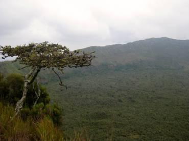 2013.6_Kenya_Mt Longonot_39