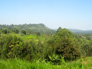 Matutu, Kenya (Outside of Kisii)